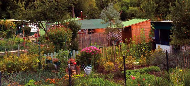 Ville de cr teil jardins familiaux for Jardin familiaux