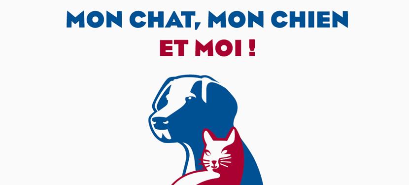 chat creteil